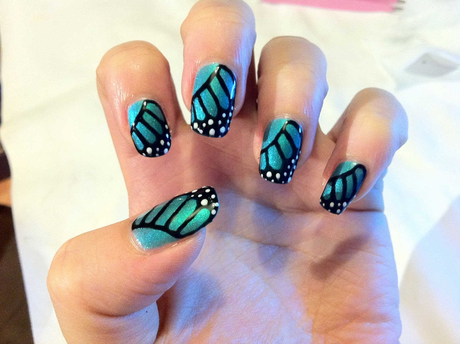 Shellac Hotski to Tchotchke Butterfly